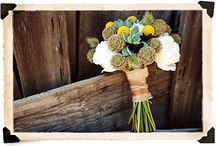 Holly & Ivy Floral Inspiration / by Holly Ashmore-Writt