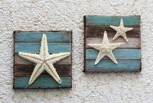 sjøstjerner