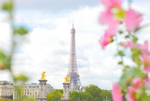 Paris / by Julianne Bingham