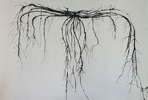 Root Vertebra – Mars Gallery / Works on paper by Maria Pinto