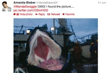 Ridiculous things people say / Dedicated to Amanda Bieber