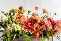 Kompozycje Kwiatowe ^^