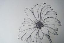 Tegning, blomster