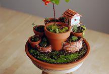 Jardines de hadas en miniatura