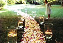 Wedding Dreams / Places and things for a ideal wedding
