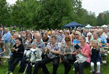 National day  Sandviken/ Sweden 6/6/2014