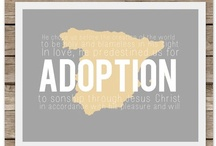 Adoption  / by Caitlin Clausing