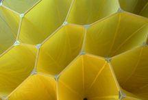 kolory - żółty