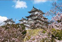 Japan press tour