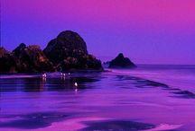 purple / PURPLE BLOWS MY MIND