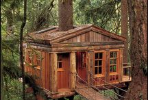 Tree house / by Peter Chichester