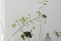Vaser / Fine vaser til å pynte opp i hus og hjem.