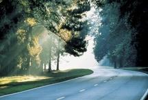 Winding Roads / by Marla Curtin