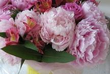Bouquet of Flowers Color Inspiration