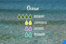 Essential Oils & Diffuser Blends / Diffuser blends | Essential Oils