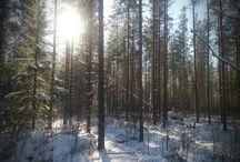 Suomen talvi / Finnish winter