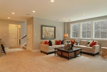 Basement Ideas / Basements are big in Stapleton - gotta find interesting ways to deck them out!
