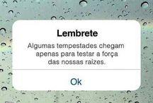 tudibão