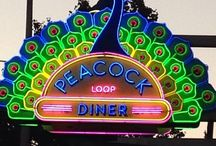 Neon Signs & Other Cool Signs / by Violet Skye Gypsy