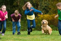 Let's Get Kids Moving / Fun, Family-Oriented Ways To Get Your Kids Moving / by Fitness Finders, Inc