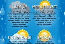 Life Insurance Company of the Southwest