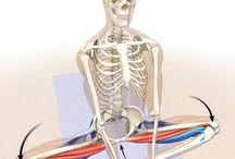 Ejercicios de yoga para cadera