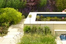 Project Church Mill Grange / www.aralia.org.uk A modern, contemporary garden based in Hertfordshire. A raised pool and a Rill extending the length of the garden and give focus, drawing the eye towards the contemporary planting. Alliums and Mediterranean plants make bold statements throughout, against the lighter natural paving. There is seating at both ends of the Rill and the raised pool provides further seating if required. Sound is provided by water chutes flowing into the rill beneath the raised pool.