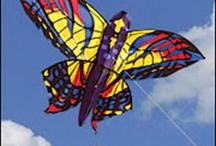 Go fly a kite / I can and I do...often / by Sherrill Murray-Lazarus