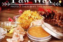 DIY Paw Wax for Dogs / Mix four simple ingredients together to create an all natural, protective barrier for your dog's paws this winter!