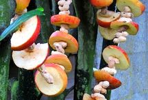 Apple Rings for Birds
