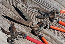 Cleaning pruning shears