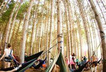 hammocks and other swinging stuff