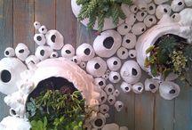 Plantes et céramique