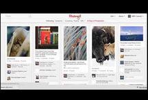 Social Media/ Pinterest