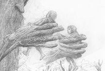 Illustrations - Alan Lee