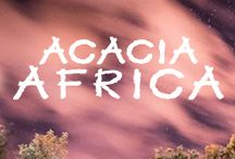 T&L Africa / Everything to do with Africa - culture, travel, economy, news