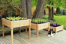 Outdoor Landscaping Ideas / Different landscaping ideas based upon the design of your home.