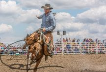 Rodeo Photography / Rodeo photos in Australia
