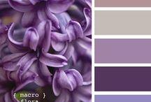 цвет фиолет