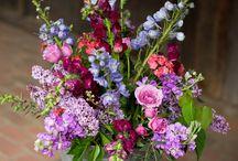 SWB Spring colour