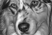 Dibujos de perro