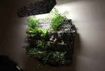 Hydroponic vertical garden / Back to green