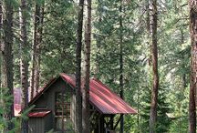house in the woods / by LAURI POWLEDGE