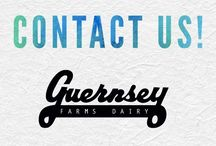 Contact Us! / If you have a question for us, or would like to chat about any of our products - we'd love to hear from you!   Phone: 248.349.1466 Email: social@guernseyfarmsdairy.com  #keepitlocal #michiganmade