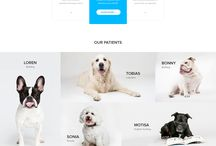 PET WEBSITE