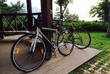 My Bicycle / 내 자전거
