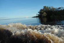 Amazonas - Rio Negro / Viagem de quatro dias pelo Rio Negro - Amazonas