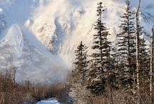 Winter is beautiful