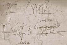 alberi/tree