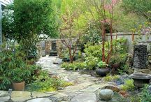 sciezki w ogrodzie
